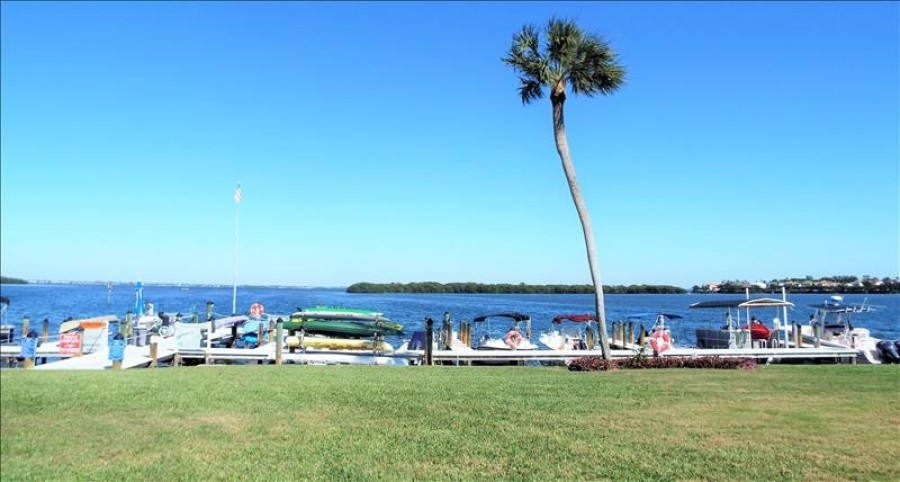 Marina and bay view