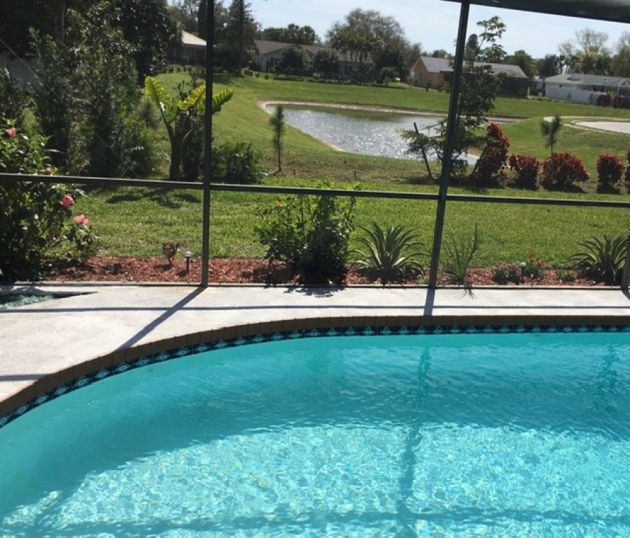 Pool with pond view