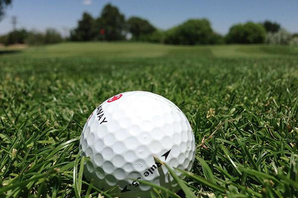 Golf Course Rentals